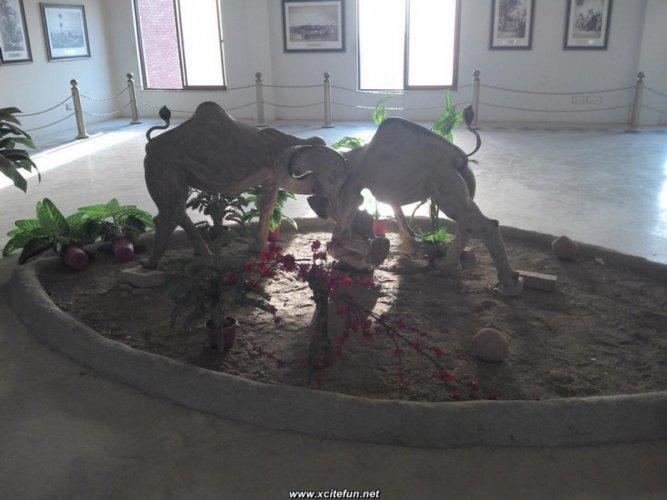 Multan Art Gallery 2