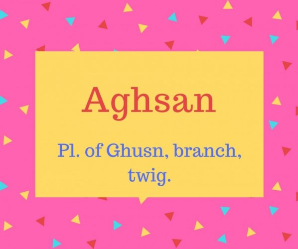 Aghsan name meaning Pl. of Ghusn, branch, twig.