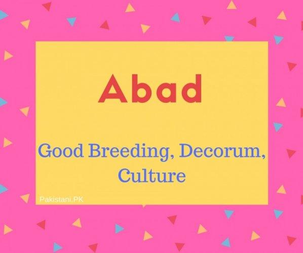 Adab Name Meaning Good Breeding, Decorum, Culture.