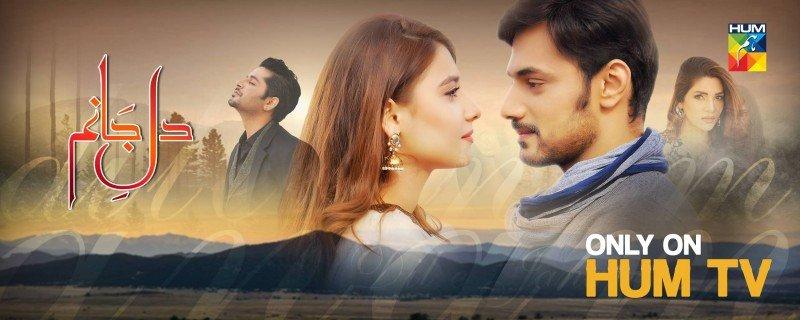 Dil e Jaanam - Hum TV Drama