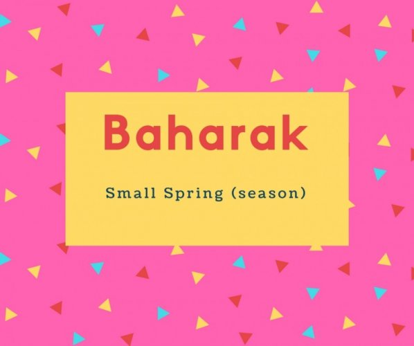 Baharak Name Meaning Small Spring (season)