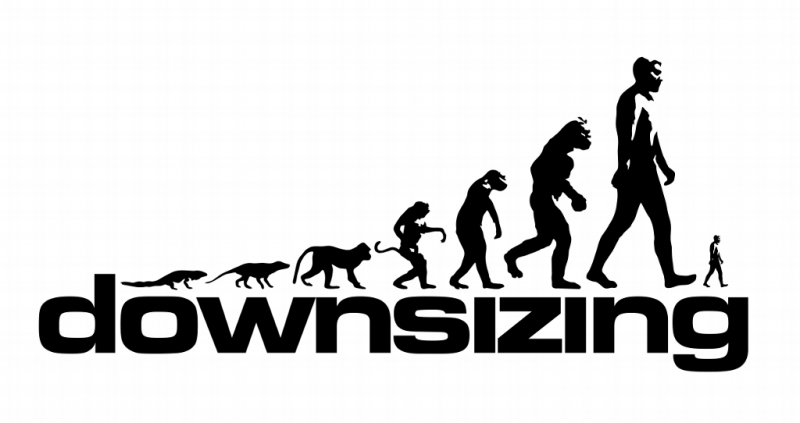 Downsizing 11