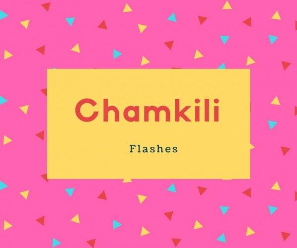 Chamkili Name Meaning Flashes