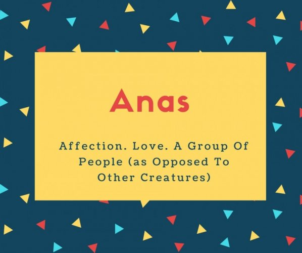 Anas Name Meaning Affection. Love. A Group Of People (as Opposed To Other Creatures)