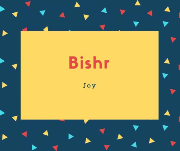 Bishr Name Meaning Joy