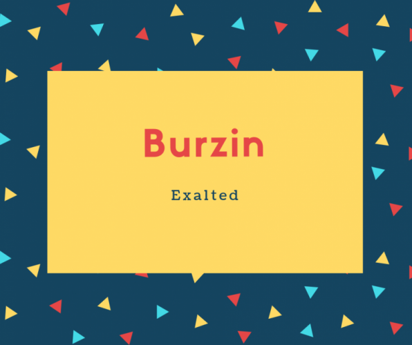Burzin Name Meaning Exalted