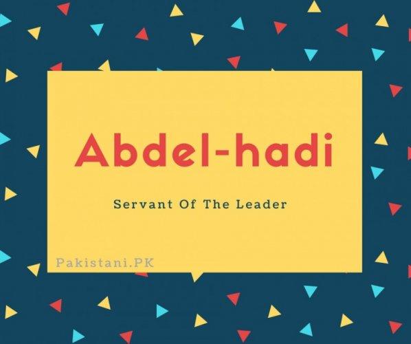 Abdel-hadi