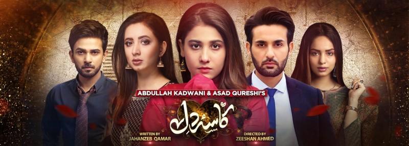 Kasa e Dil - Actors, Timings, Review