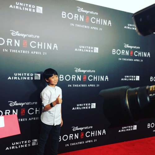 Ian Chen 5