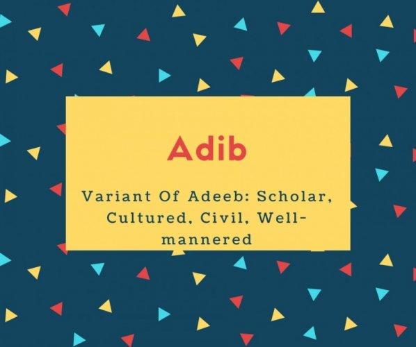 Adib Name Variant Of Adeeb- Scholar, Cultured, Civil, Well-mannered