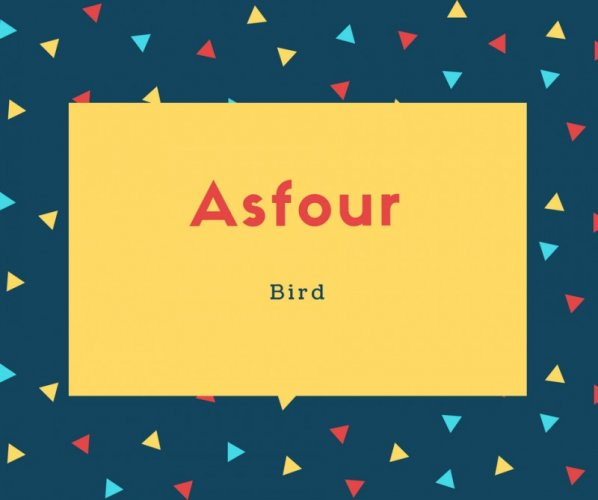 Asfour Name Meaning is Bird