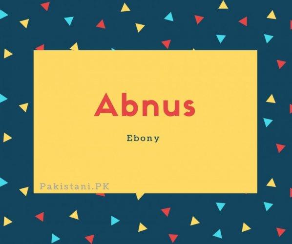 Abnus