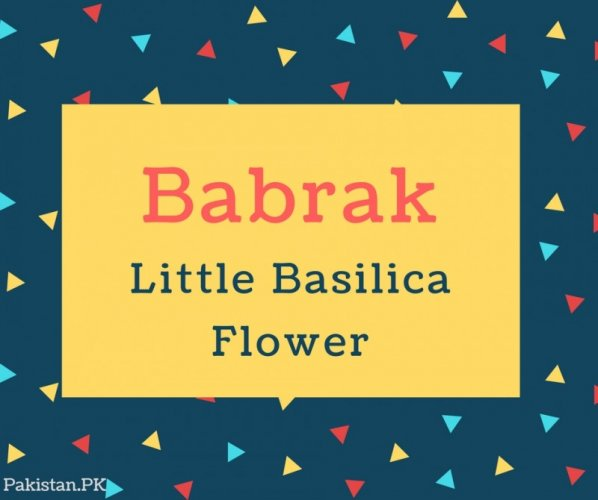 Babrak Name Meaning In Little Basilica Flower