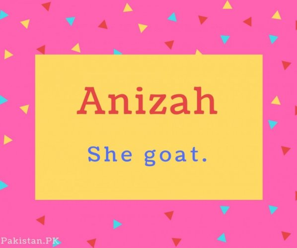 Anizah Name Meaning She goat..
