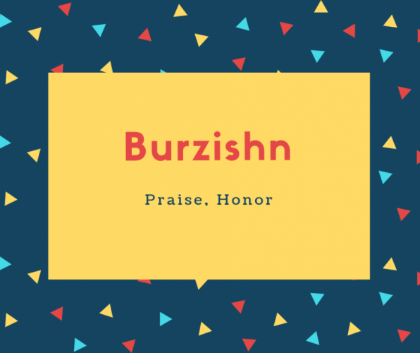 Burzishn Name Meaning Praise, Honor