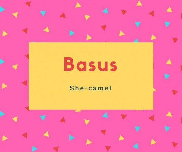 Basus Name Meaning She-camel
