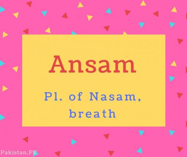 Ansam Name Meaning Pl. of Nasam, breath.