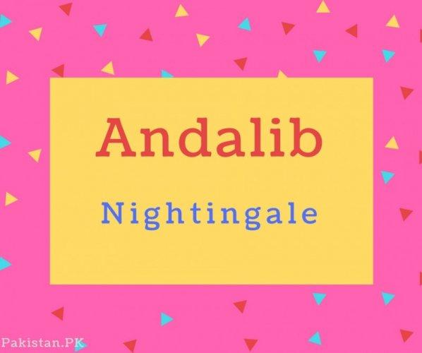 Andalib Name Meaning Nightingale