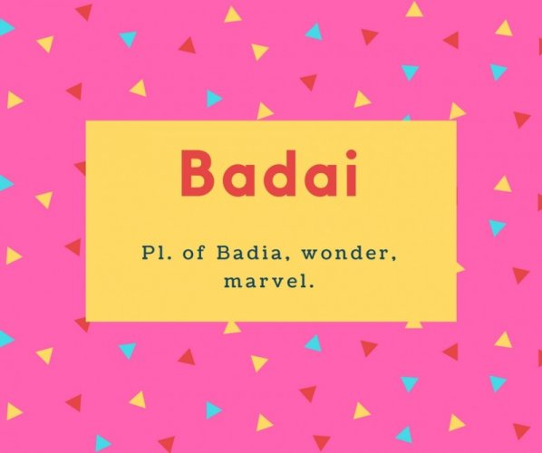 Badai Name Meaning Pl. of Badia, wonder, marvel