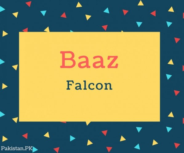 Baaz Name Meaning In Falcon