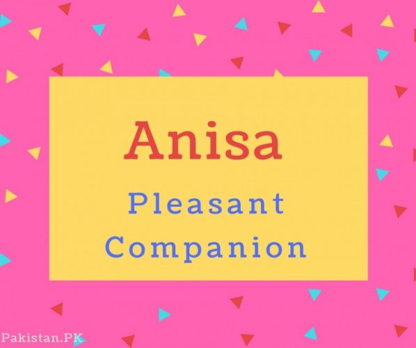 Anisa Name Meaning Pleasant Companion.