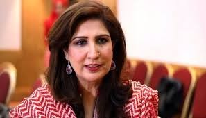 Shehla Raza Find Everything About Him