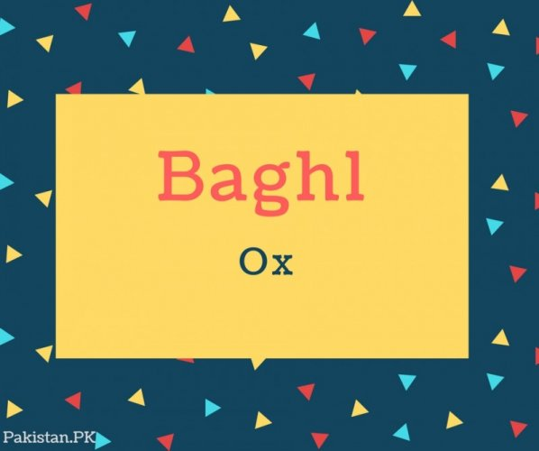 Baghl Name Meaning Ox