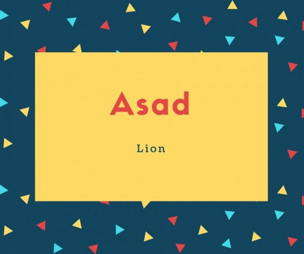 Asad Name Meaning Lion
