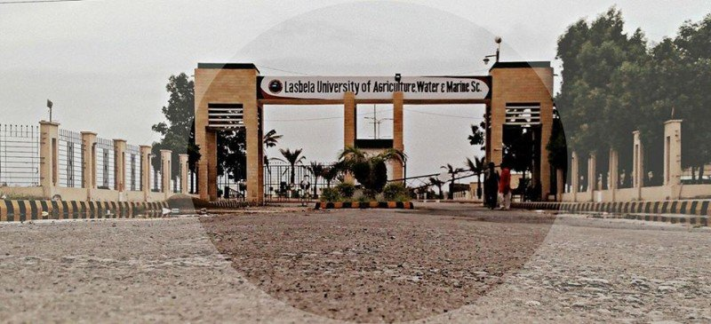Lasbela University of Agriculture, Water and Marine Science Complete Information