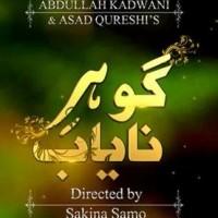 Gohar e Nayab Full Drama Information