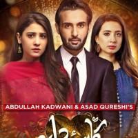 Kasa e Dil - Full Drama Information