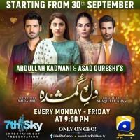Dil-e-Gumshuda full drama information