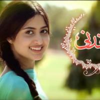 Chandni - Full Drama Information