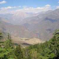 Chitral Gol National Park 1