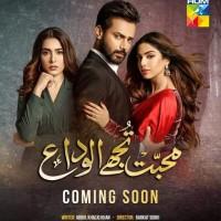 Mohabbat Tujhe Alvida - Full Drama Information