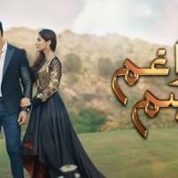 Tera Gham Aur Hum - Full Drama Information
