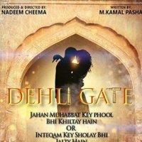Delhi Gate 2