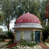 Zulfiqar Bagh 1