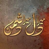 Mera Dil Mera Dushman - Full Drama Information
