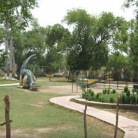 Ladies & Children Park 1