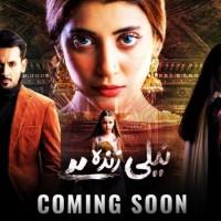 Neeli Zinda Hai - Full Drama Information
