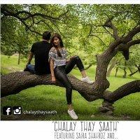 Chalay Thay Saath 8