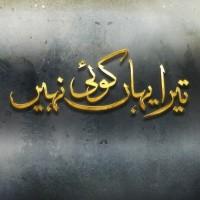 Tera Yahan Koi Nahin - Full Drama Information