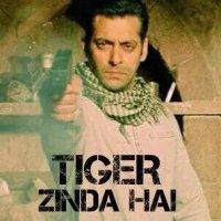 Tiger Zinda Hai 20