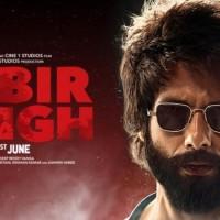 Kabir Singh 1 - Information, review