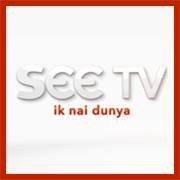 See TV Logo 2