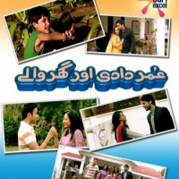 Omer Dadi Aur Gharwale- Full Drama Information