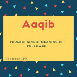 Aaqib name meaning In Sindhi meaning is - Follower.