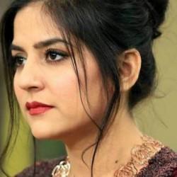Zeenat Bint -e- Sakina Hazir Ho - Full Drama Information