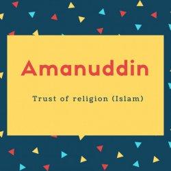 Amanuddin Name Meaning Trust of religion (Islam)